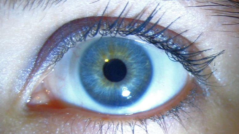 Ett öga