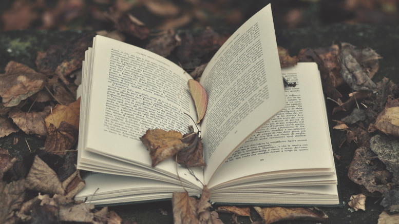 """Book"" CC BY-NC-ND 2.0 by Lorenzo Scheda on Flickr"